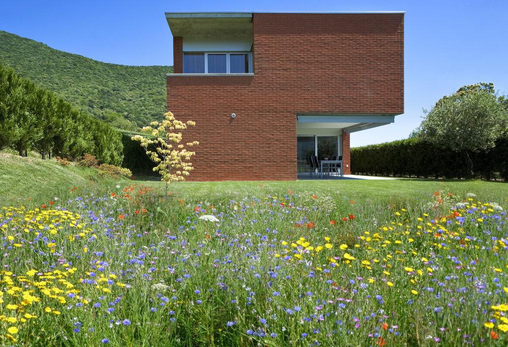 Bloemenweide aanleggen tips info - Huis in de tuin ...