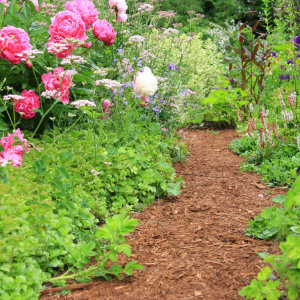 houtsnippers voor tuinpad