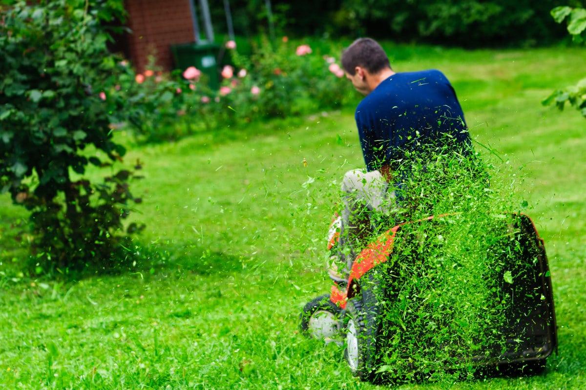 onderhoud maaien gras