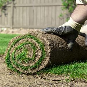 prijs tuinarchitect