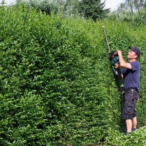 Tuinonderhoud prijzen en werkwijze for Prijzen tuinonderhoud