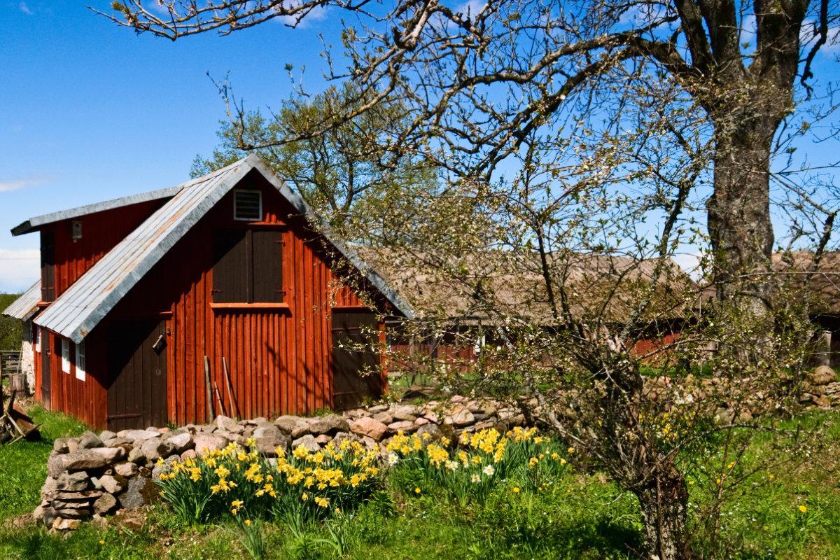 Landelijke tuinen fotospecial foto s vol ideeën voor de