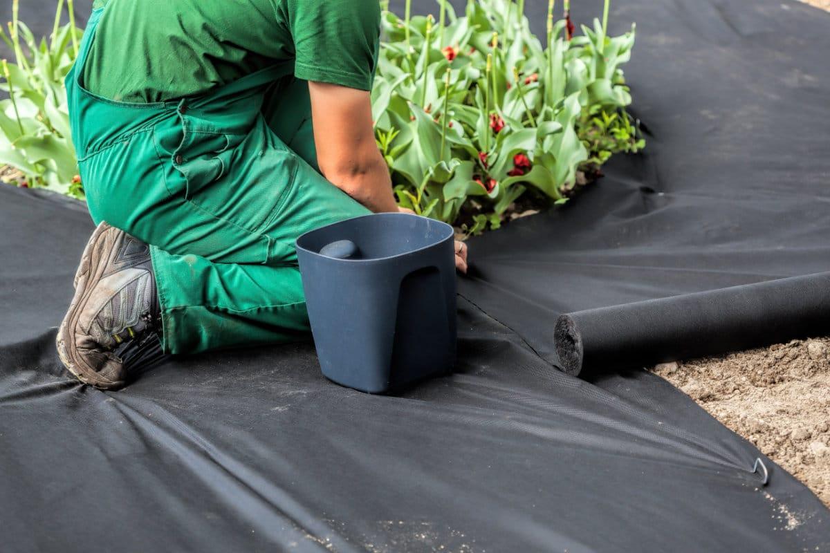 tuinonderhoud kosten